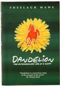 sheelagh_dandelion