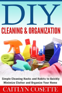 CaitlynCosette-DIY_Cleaning___Organization-1