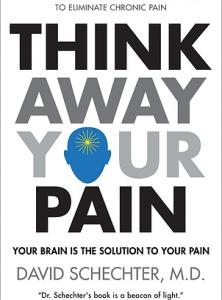 DavidSchechter_pain book